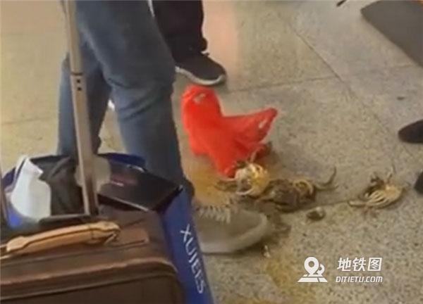 活螃蟹被禁上高铁 男子踩死后带上车